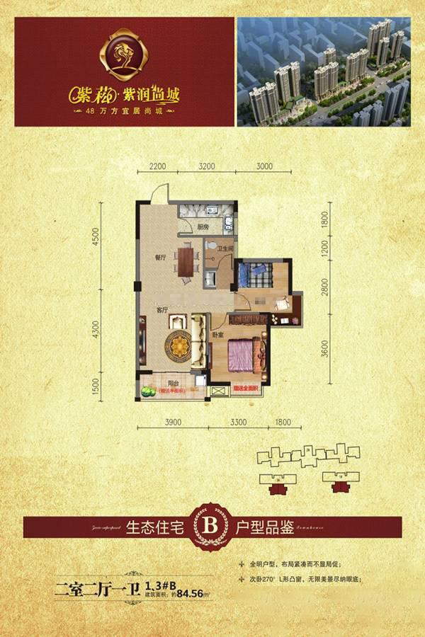 3#B户型紫崧·紫润尚城