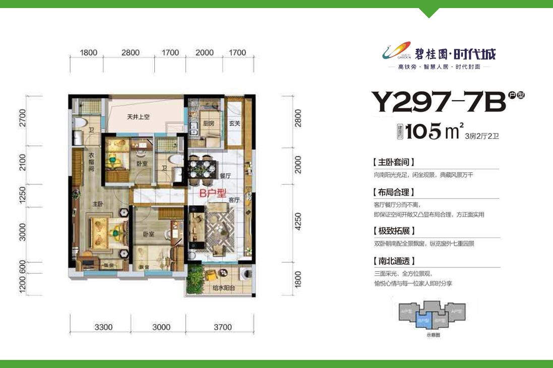 Y297-7B